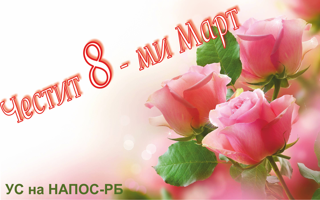 8mart_napos